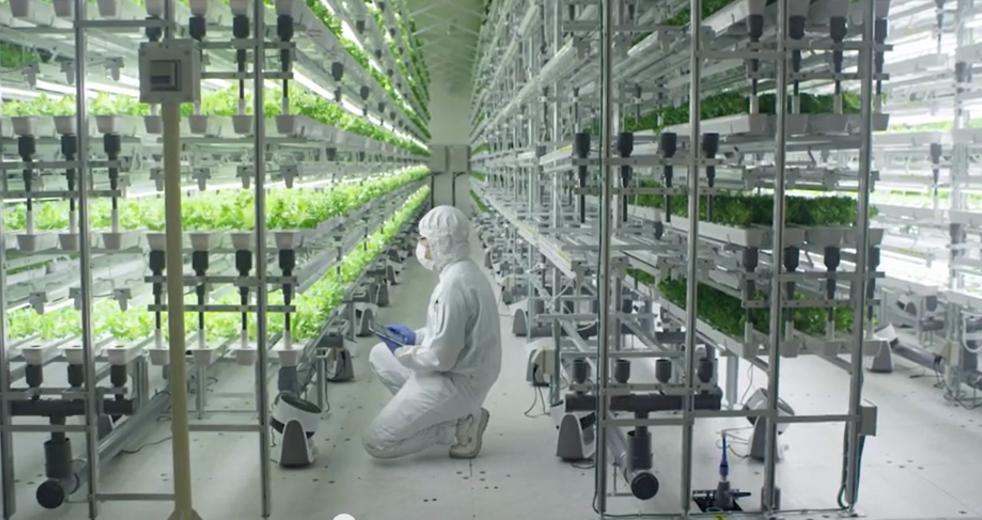 Интернет вещей в сельском хозяйстве
