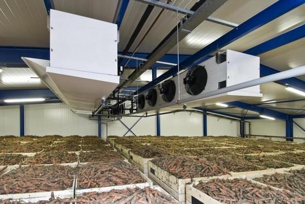 Как овощи «переживают» зиму: системы автоматизации овощехранилищ