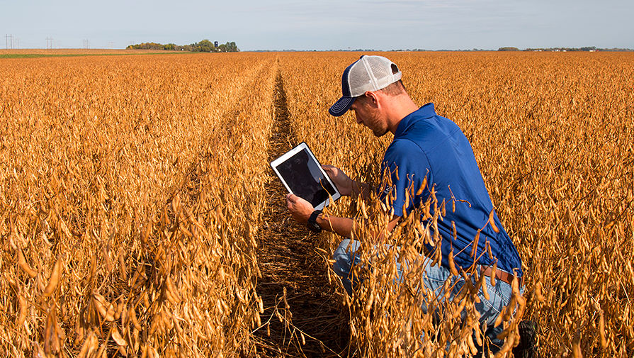 How advanced IoT technologies have changed the agriculture