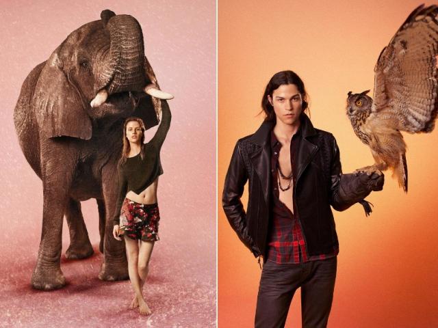 6 модных брендов, которые заботятся об окружающей среде