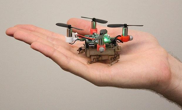 Дроны-«насекомые»: оружие будущего