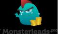 https://monsterleads.pro/